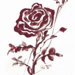 蜷川有紀 赤い薔薇
