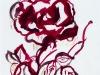Drawing Rose 2018-I